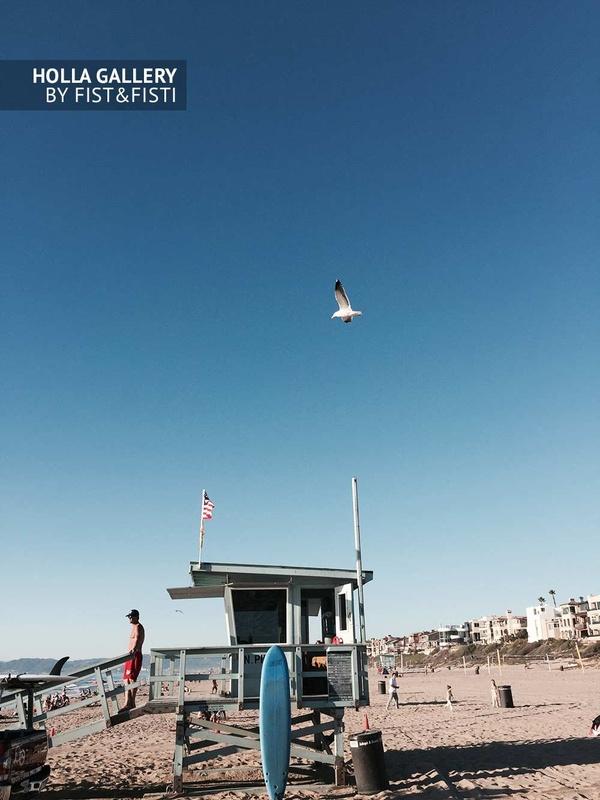 Побережье Калифорнии. Venice, Santa Monica. Спасательная вышка, доска для серфинга и чайка