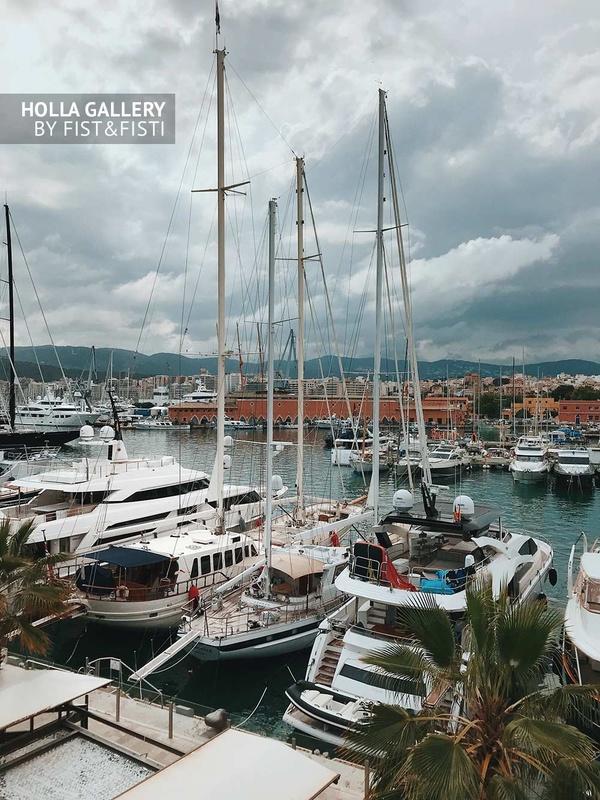 Морской порт с лодками, яхтами и катерами. Пальмы и горы