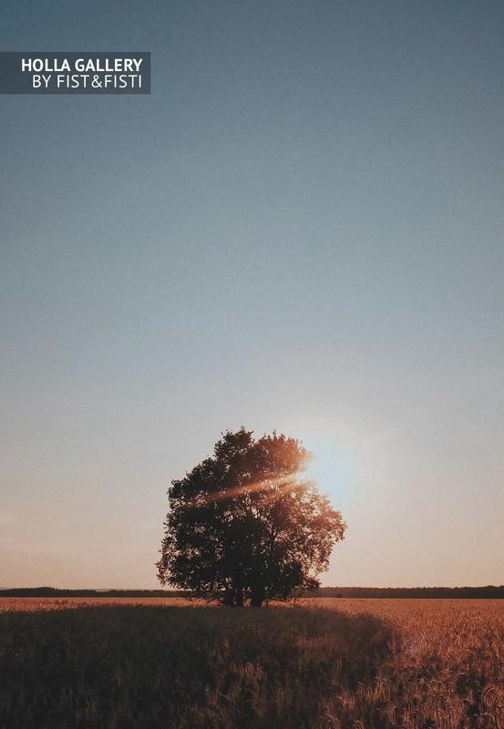 Одинокое дерево на закате фото для интерьера, фото картина