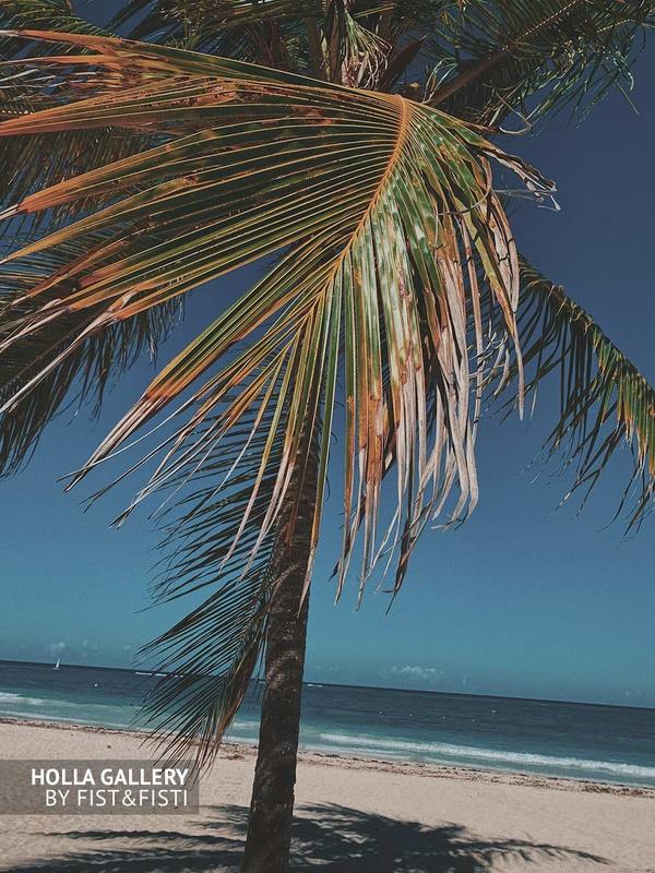 Пальмовые листья на пляже бескрайнего океана. Фото постер на стену