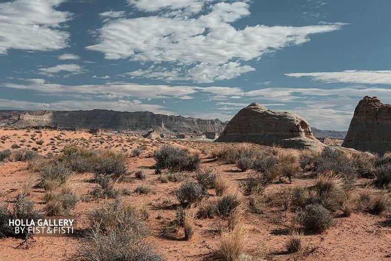 Кустарники в национальном парке штата Utah. Скалы и небо над пустыней.