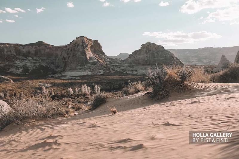 Кустарники и скалы в пустыне Utah