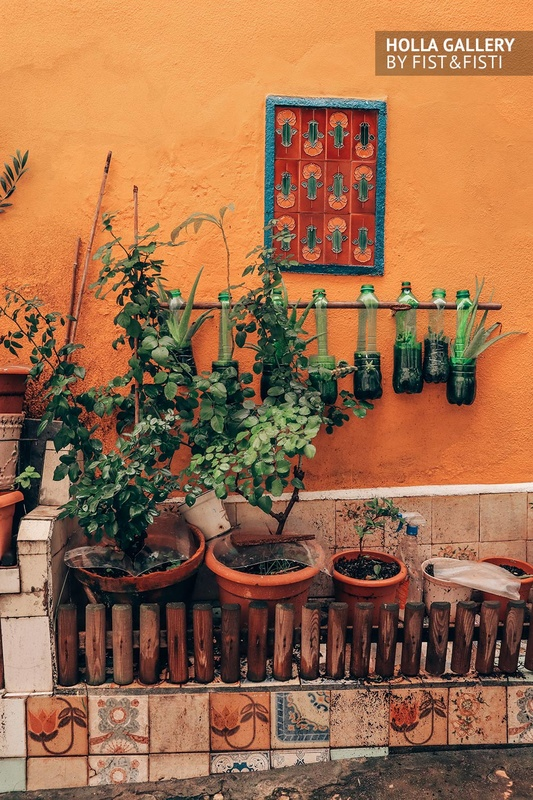 Маленький сад на фоне желтой стены Лиссабона