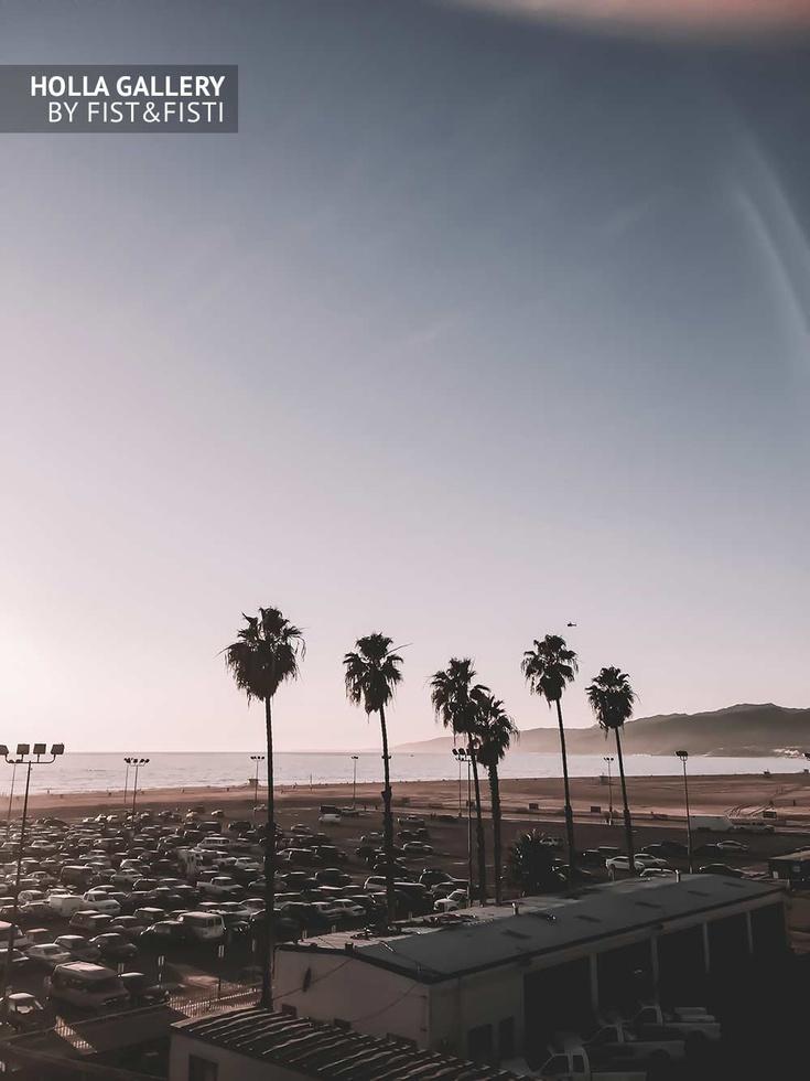 Вид на пальмы и побережье в Санта-Монике. Ясное небо
