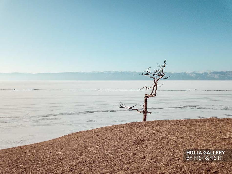 Дерево на озере Байкал, зимний Байкал, замерзшее озеро. Остров Ольхон. Плакат на стену с Байкалом