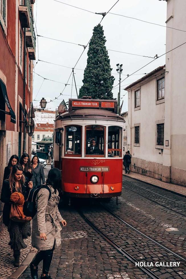 Елка и трамвай на улице Лиссабона