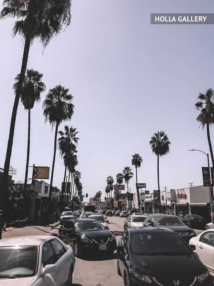 Пробка на улице с пальмами