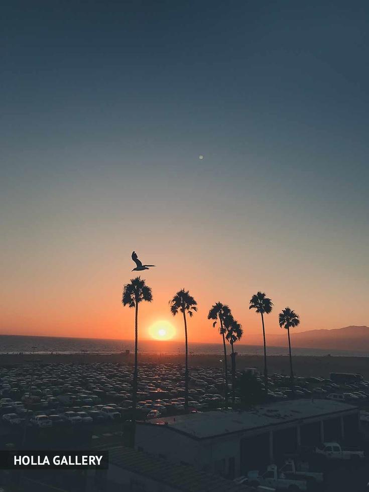 Автостоянка на пляже во время заката
