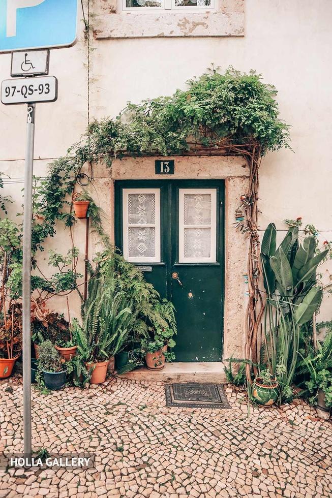 Дверь с растениями вокруг в Лиссабоне
