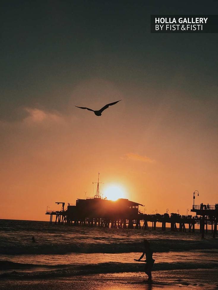 Santa Monica, Los Angeles, закат, чайка, пирс, серфер, небо