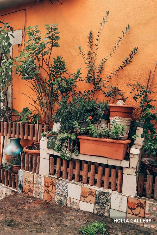 Цветы в горшках у стены Лиссабона