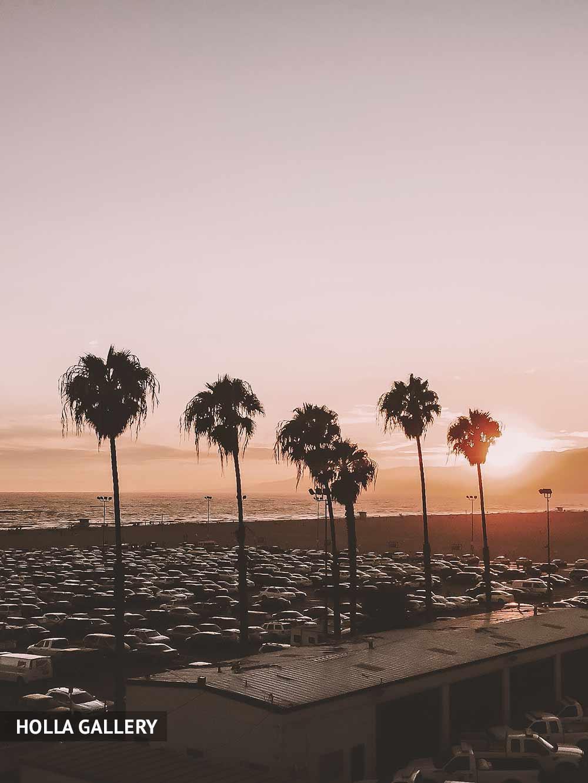 Пальмы на фоне заката пляжа Санта-Моника