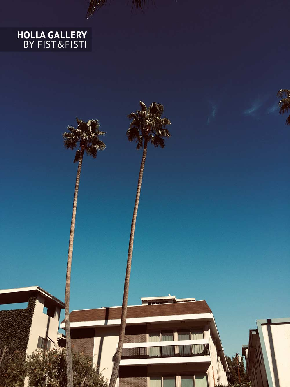 Beverly Hills, пальмы, небо, отель
