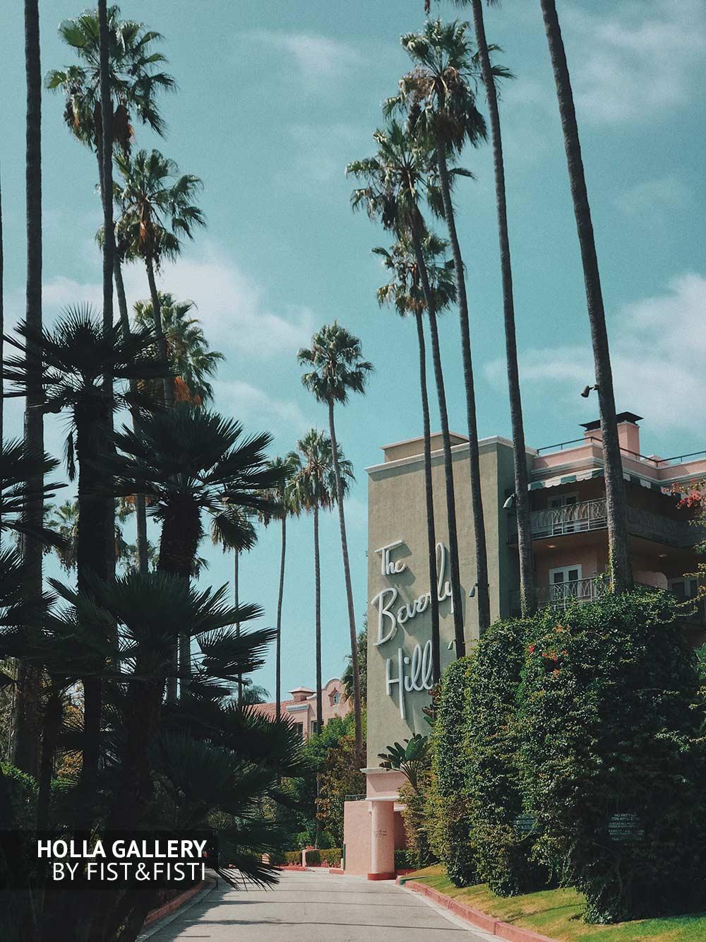 Beverly Hills, отель, пальмы, солнце