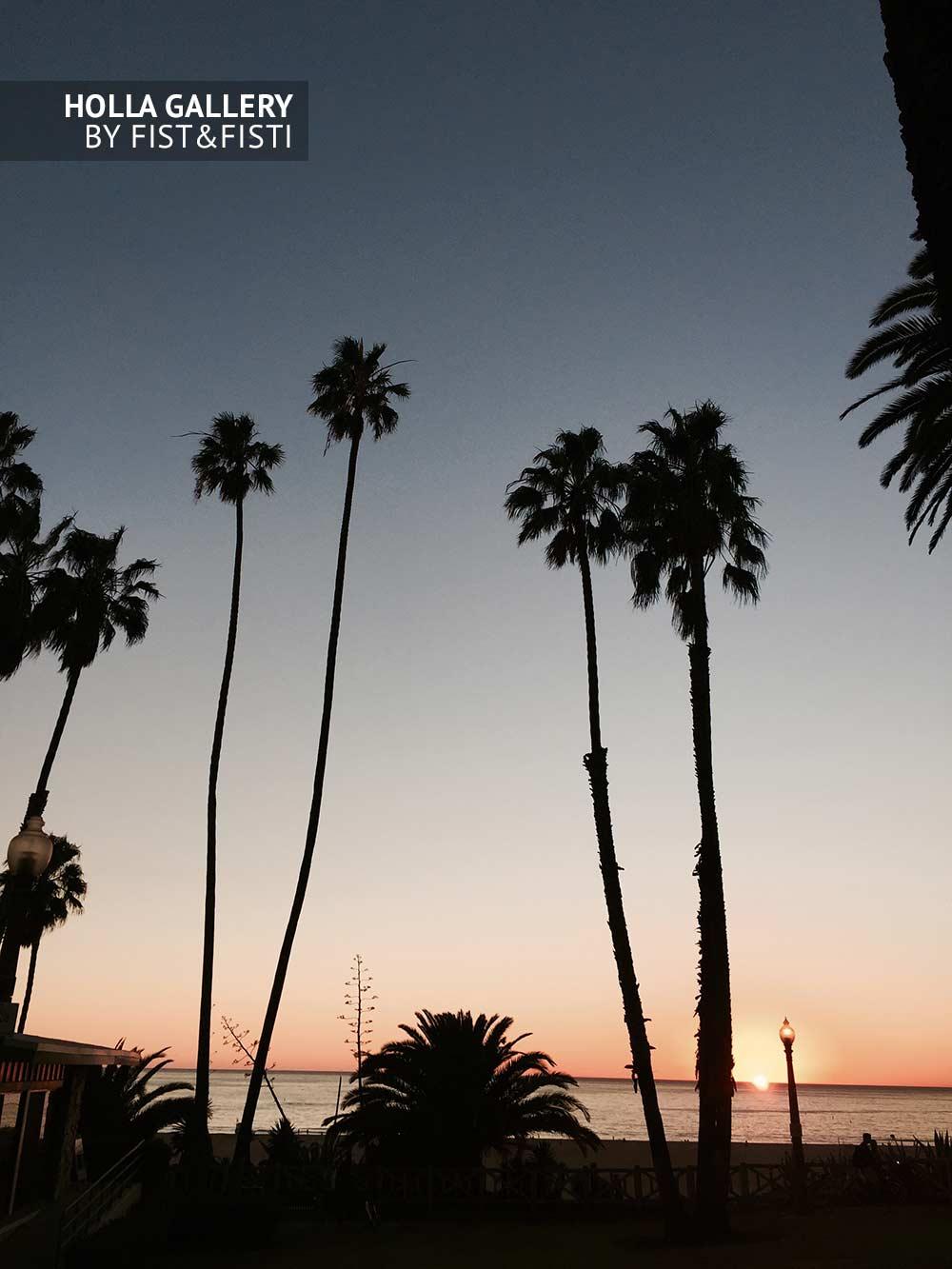 Пальмы на закате в Santa Monica, Лос-Анджелес