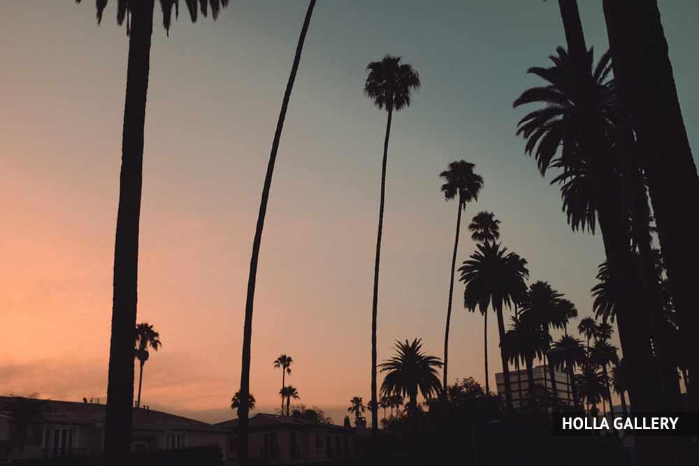 Закат пляжа Санта-Моника на фоне пальм