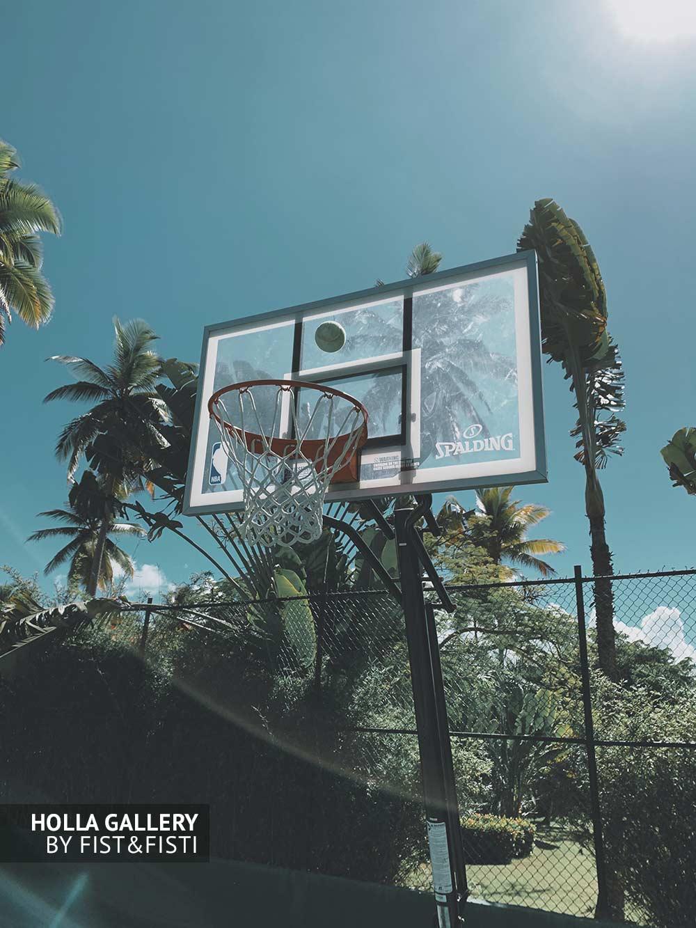 Теннисный мяч летит в баскетбольное кольцо на фоне летнего солнца и пальм