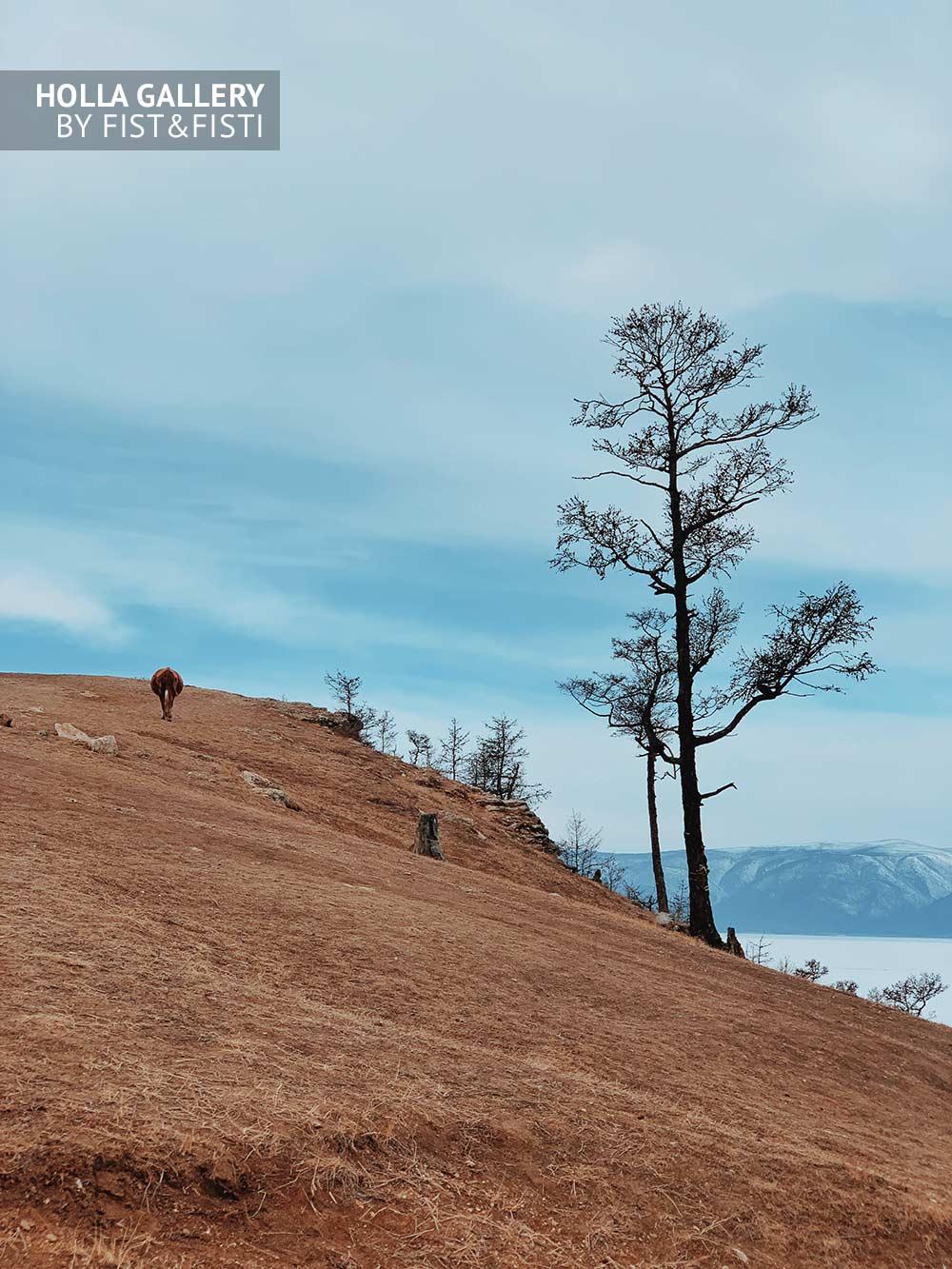 Опушка на острове Ольхон на Байкале. Зимний пейзаж с горами на фоне