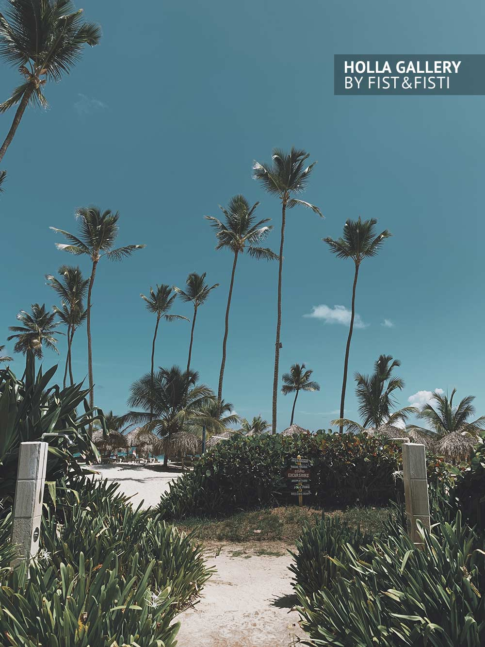 Тропические пальмы на фоне летнего неба. Вход на песчаный пляж