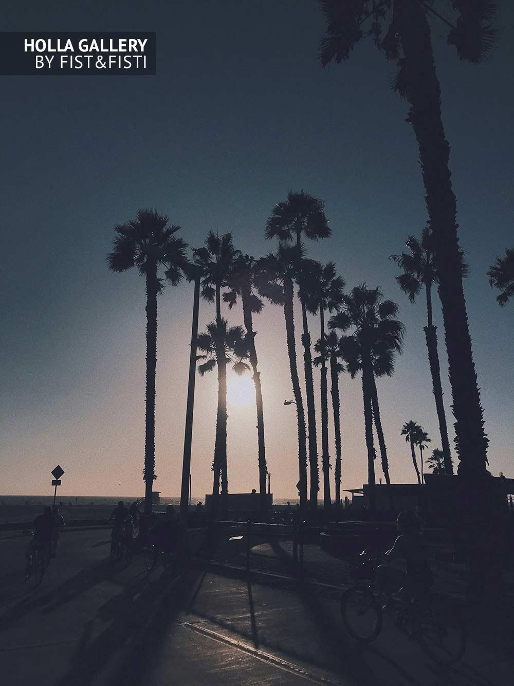 Santa Monica, Venice, пальмы, закат, солнце, велосипеды, пляж